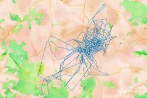 Bewegungsstudie aus einer Daten-Woche. © pixeldiversity