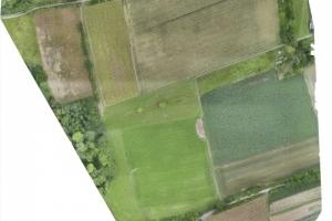 Orthomosaic aus etwa 400 zusammengesetzten Drohnenfotos. Eine gute Grundlage zur Habitat- und Landnutzungsanalyse. © Luftpixel.com